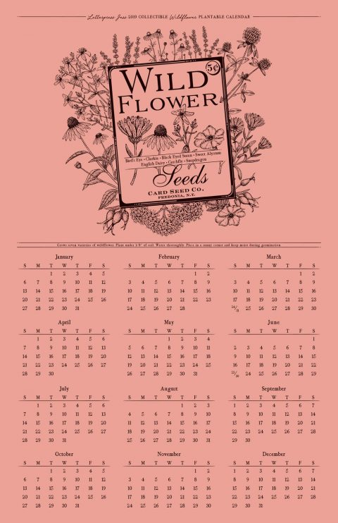 2019 Letterpress Wildflower Wall Calendar