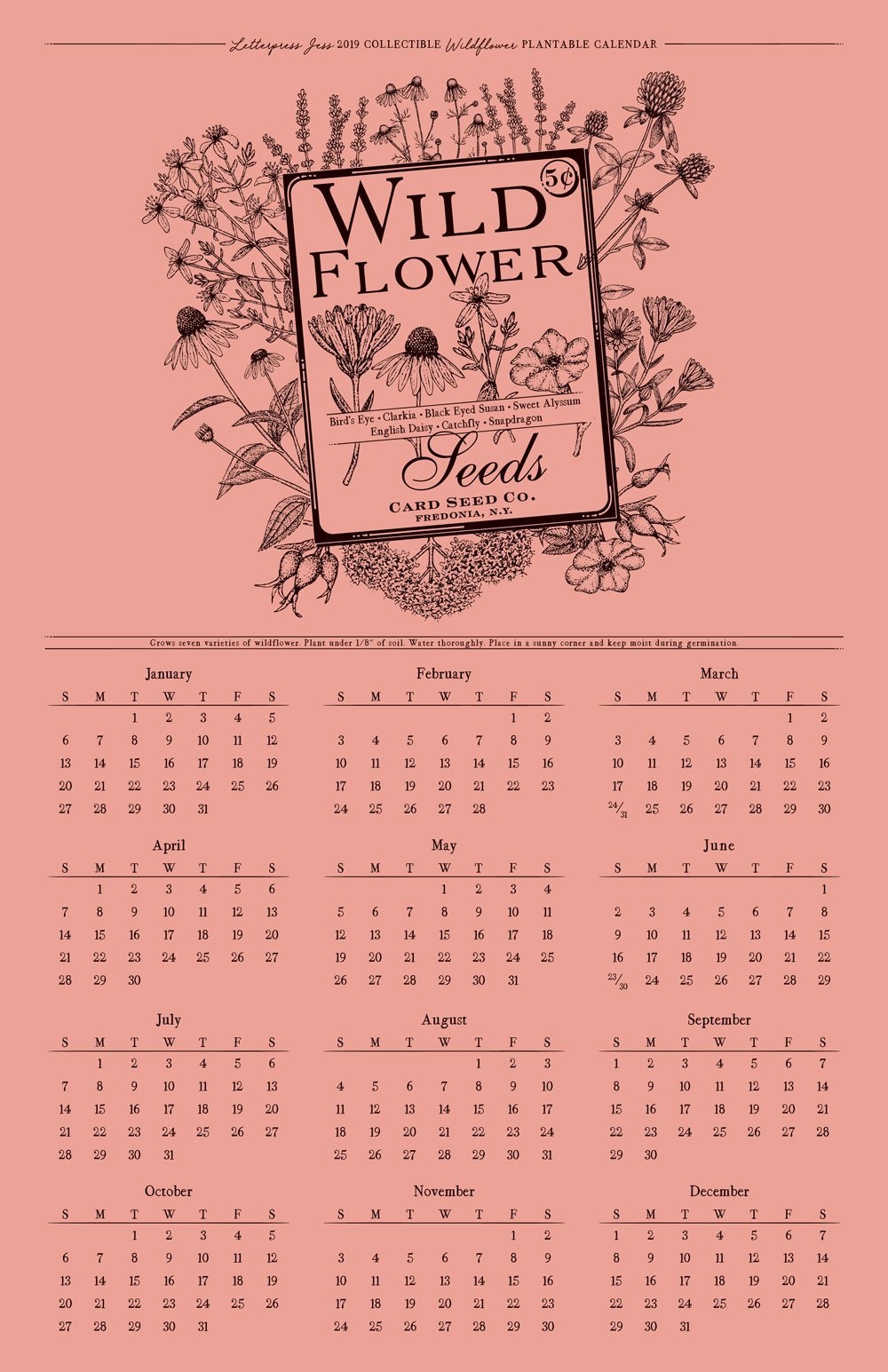 2019 Letterpress Wildflower Wall Calendar Letterpress Jess