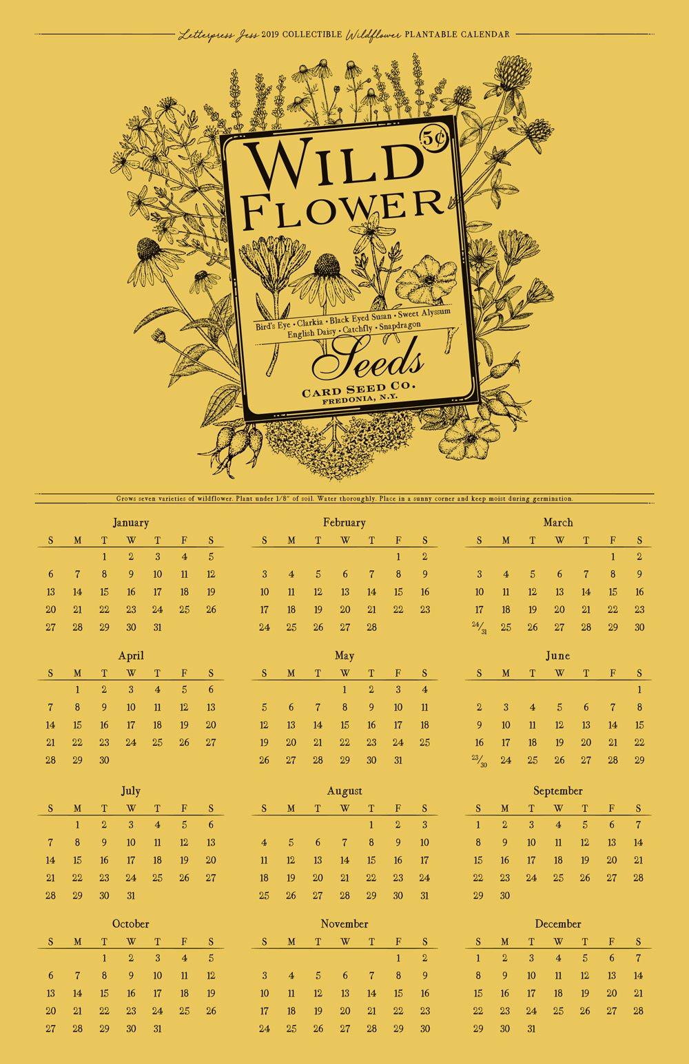 2019 Letterpress Wildflower Wall Calendar