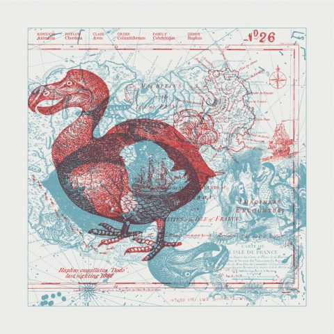 Imaginary Encounters Dodo Bird Letterpress Art Print