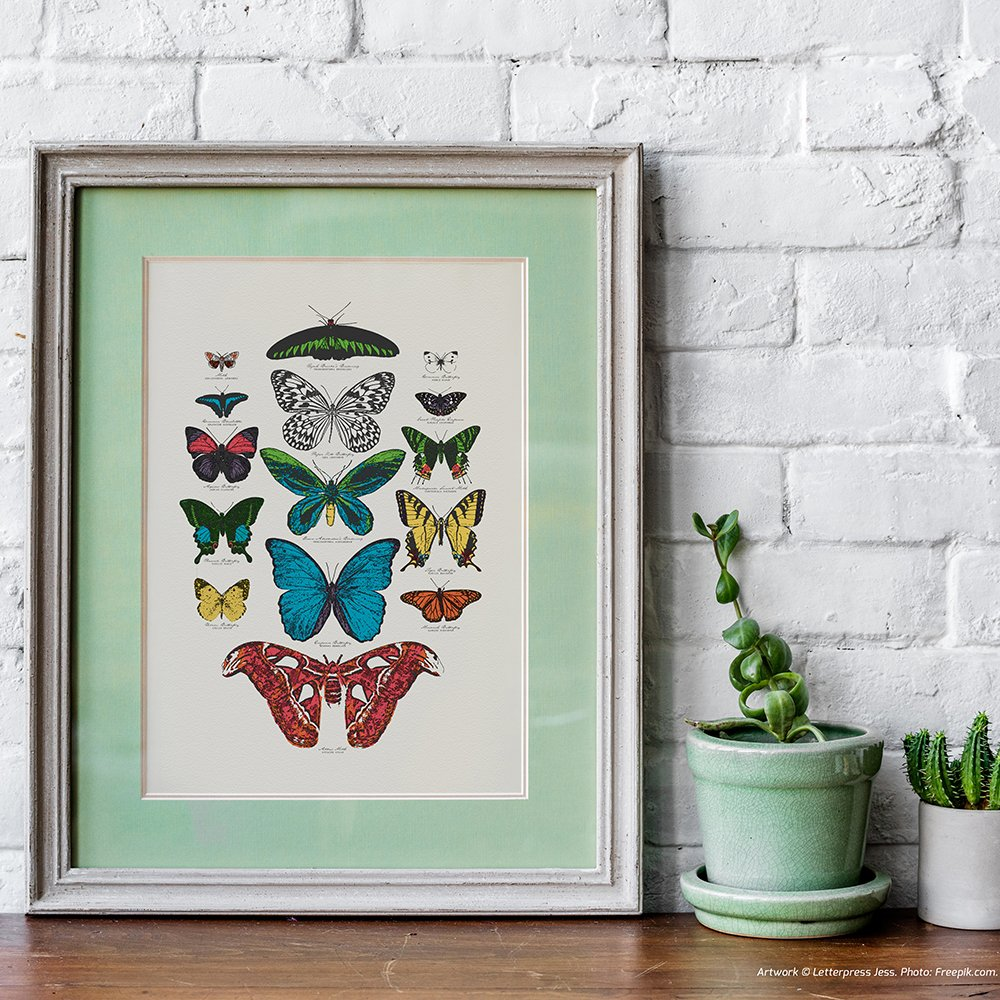 Animal Crossing Letterpress Butterfly Art Print